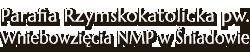 Parafia Rzymskokatolicka pw. Wniebowzięcia NMP w Śniadowie